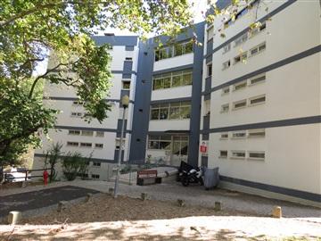 Apartamento T3 / Lisboa, Olivais Norte