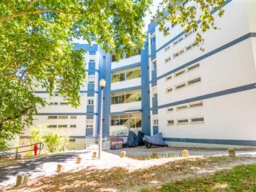 Apartment T3 / Lisboa, Olivais Norte