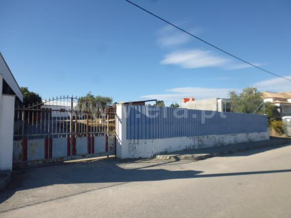 Armazém / Castelo Branco, Escalos de Cima