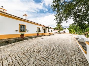 Country Estate T3 / Évora