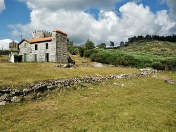 Country house T2 / Marco de Canaveses, Várzea, Aliviada e Folhada