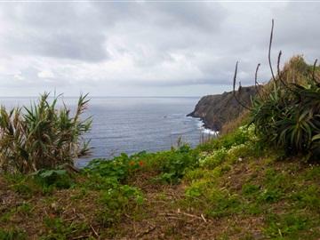 Detached house T2 / Ponta Delgada, Relva