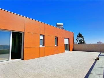Duplex T5 / Guarda, Centro
