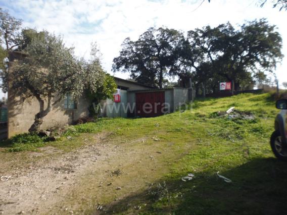 Farm / Castelo Branco, Escalos de Cima