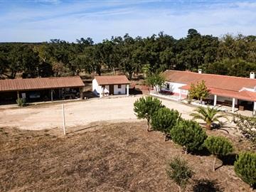 Farm T3 / Odemira, São Teotónio