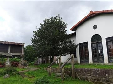 Farm T4 / Vila Verde, Coucieiro