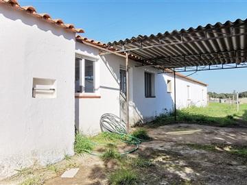 Farm T5 / Santiago do Cacém, São Domingos e Vale de Água