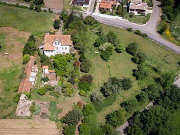Farm T8 / Albergaria-a-Velha, Alquerubim