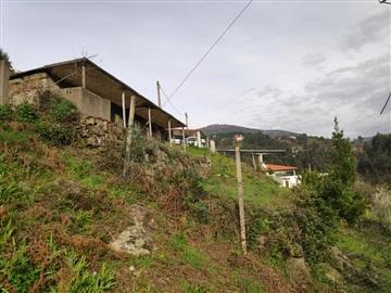 House / Amarante, Candemil