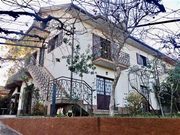 House T3 / Amarante, Telões