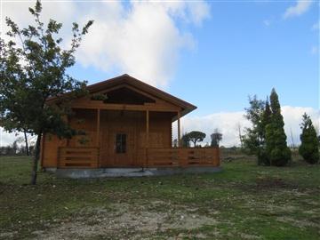 House T3 / Oliveira do Hospital, Seixo da Beira