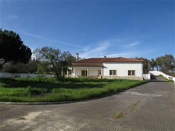 House T3 / Rio Maior, Rio Maior