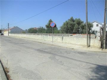 Lot / Palmela, Pinhal Novo