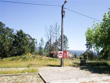 Lote / Amarante, Vila Caiz
