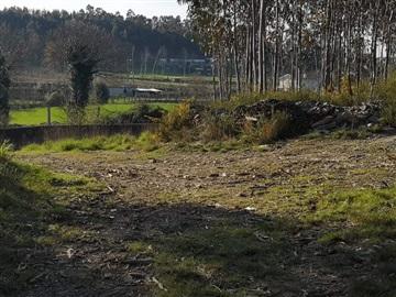 Lote Industrial / Trofa, Bougado (São Martinho e Santiago)