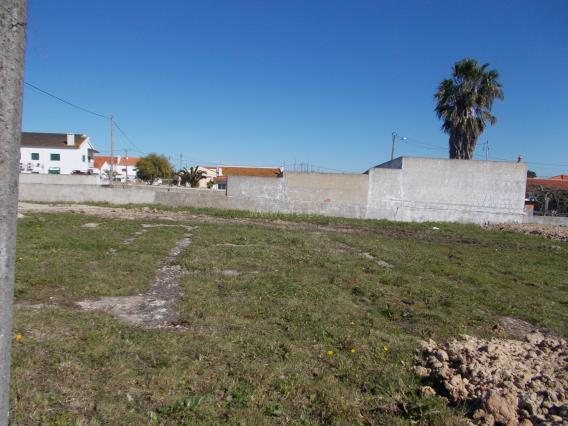 Lote / Moita, Zona 2 - Chão Duro, Carvalhinho, Penteado e Alto S