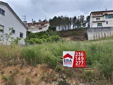 Lote / Pombal, Governos