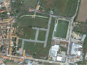 Lote / Viana do Alentejo, Viana do Alentejo