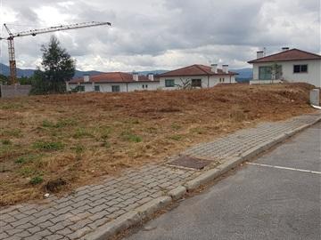 Lote / Vila Verde, Prado (São Miguel)