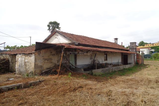 Pequeña finca / Oliveira de Azeméis, São Roque