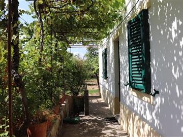 Petite ferme T4 / Abrantes, Rio De Moinhos