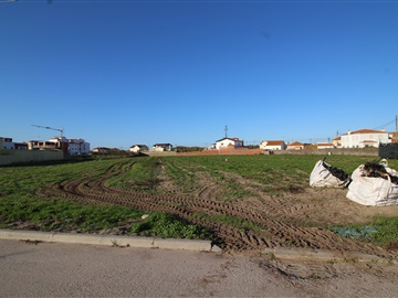 Plot / Peniche, Ferrel
