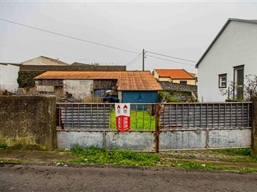 Plot / Ponta Delgada, Arrifes