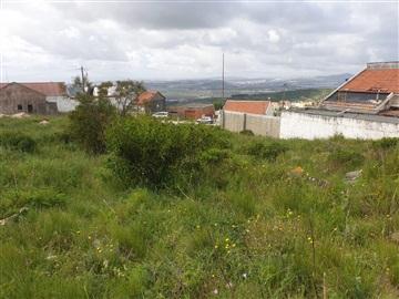 Plot / Vila Franca de Xira, Vialonga