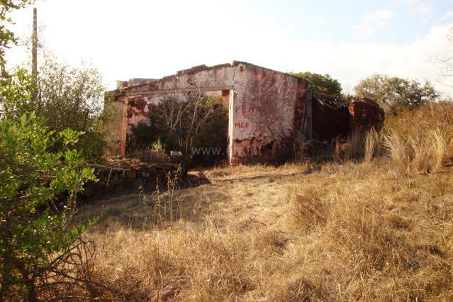 Quinta / Tavira, Santa Catarina da Fonte do Bispo
