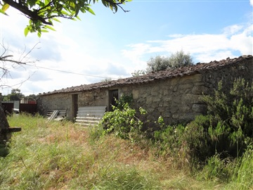 Small Farm / Castelo Branco, Alcains