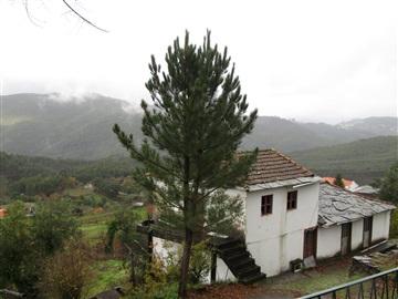 Small Farm T3 / Arouca, Canelas e Espiunca