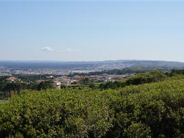 Terrain à bâtir / Alcobaça, São Martinho do Porto