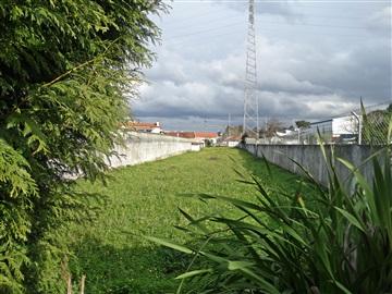 Terrain à bâtir / Ovar, Cortegaça