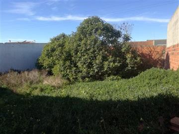 Terrain à bâtir / Peniche, Ferrel