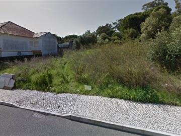 Terrain / Sintra, Albarraque