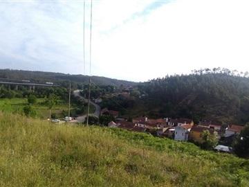 Terreno / Águeda, Carvoeiro