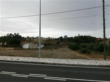 Terreno / Cartaxo, Cartaxo