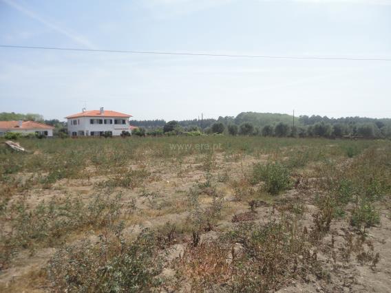 Terreno com ruina / Cantanhede, Cantanhede e Pocariça