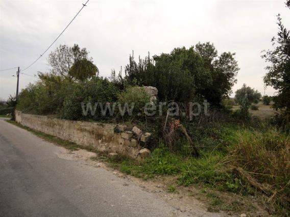 Terreno com ruina / Santarém, Vilgateira