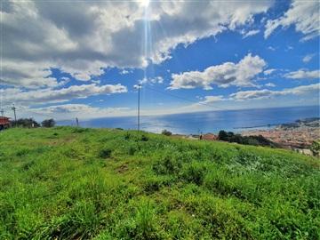 Terreno / Funchal, Funchal (Santa Maria Maior)