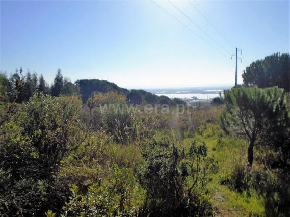 Terreno Para Construção / Figueira da Foz, Vila Verde - Figueira da Foz