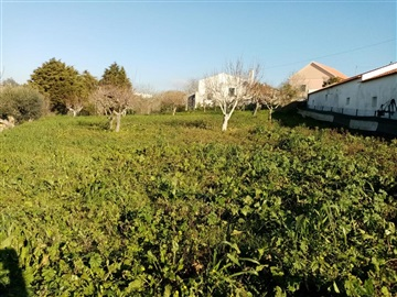 Terreno Para Construção / Sobral de Monte Agraço, Sapataria