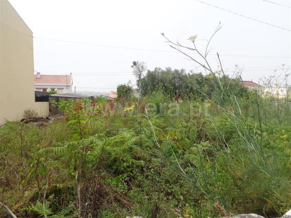 Terreno Para Construção / Viana do Castelo, Afife