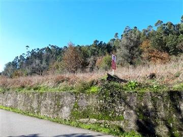 Terreno Para Construcción / Barcelos, Oliveira