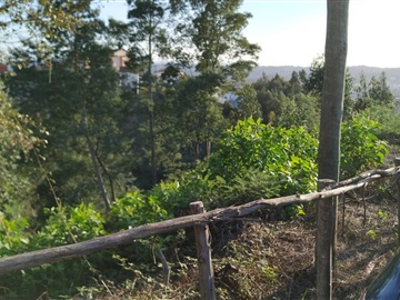 Terreno Para Construcción / Coimbra, Tovim