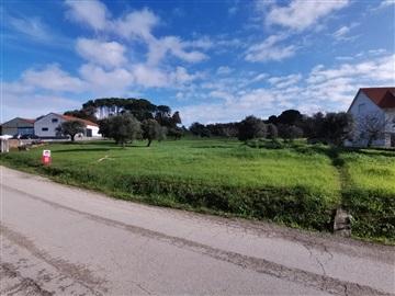 Terreno Para Construcción / Tomar, Tomar (São João Baptista) e Santa Maria dos Olivais