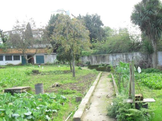 Terreno Para Construcción / Vila Nova de Gaia, Oliveira do Douro