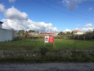 Terreno / Paredes, Duas Igrejas
