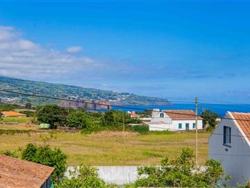 Terreno / Ponta Delgada, São Vicente Ferreira