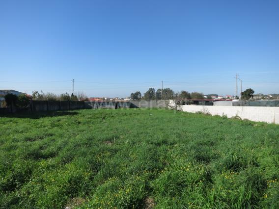 Terreno / Póvoa de Varzim, Terroso